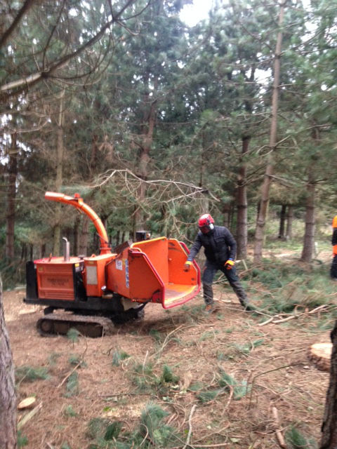 nptc woodchipper course yorkshire
